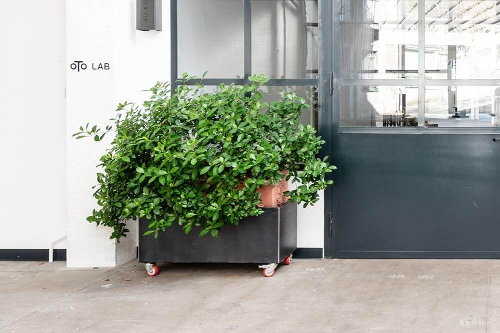 Oto Lab - Oto Forniture fioriera Oto Flower rettangolare